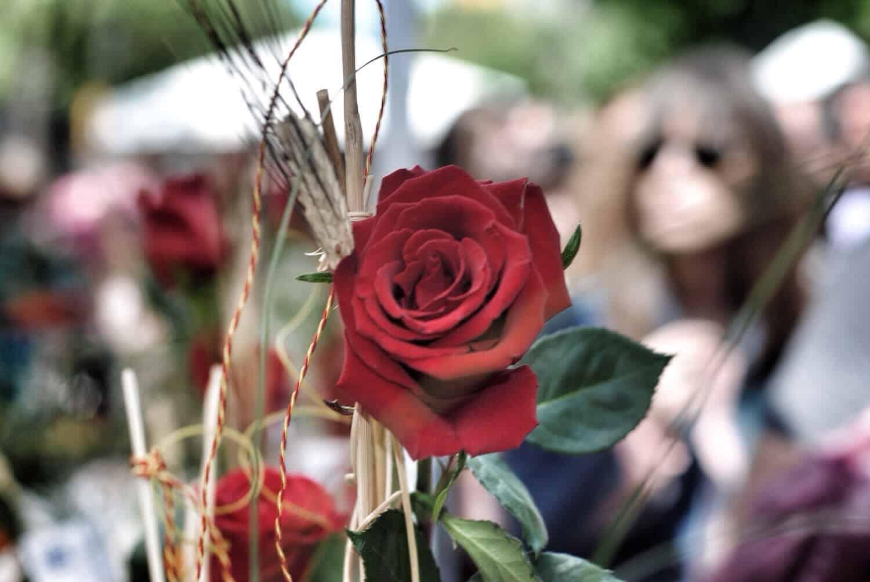 La Diada de Sant Jordi