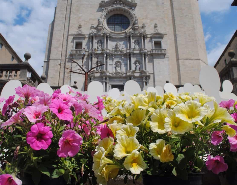 Girona Cathedral, Temps de Flors 2014