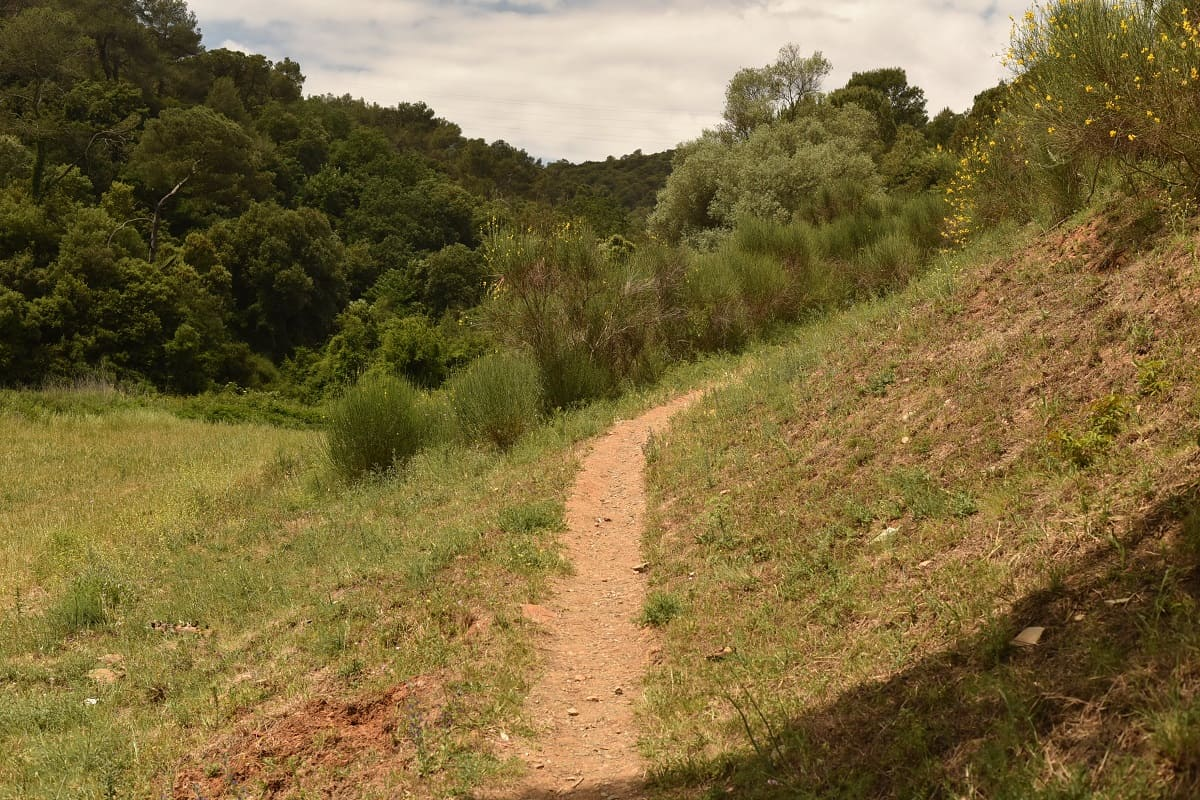 GR 96 Trail at Vallvidrera reservoir