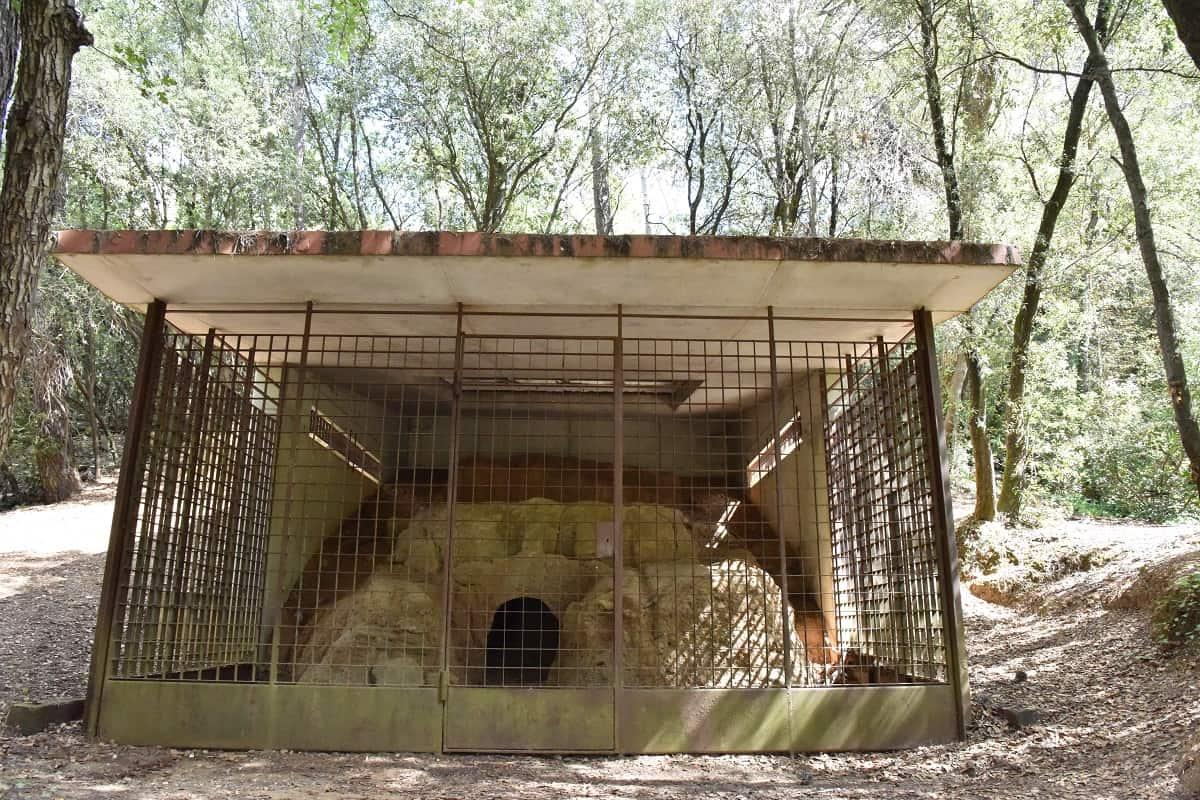 Forn Ibèric de Sant Cugat del Vallès