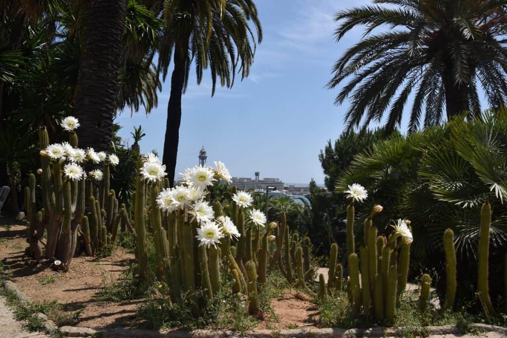 Jardines de Mossèn Costa i Llobera