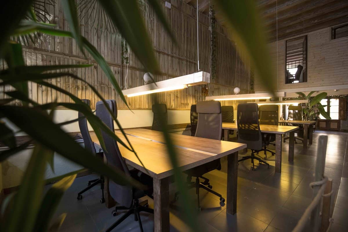 Jungle Coworking
